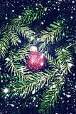 Christmas Card with   decoration - sparkle red bauble over  fir. Tree background. Abstract Christmas  Christmas Card with  festive ornaments Royalty Free Stock Images