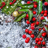 Christmas card of evergreen branches, red leaves, berry with sno Stock Photography