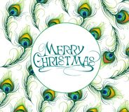 Christmas card  with feathers Royalty Free Stock Image