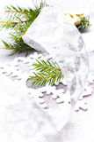 Christmas Card with Fir tree branch and Silver Christmas Decorat Royalty Free Stock Photography