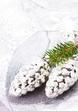 Christmas Card with Fir tree branch and Silver Christmas ornamen Royalty Free Stock Photos