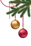 Christmas card. With fir tree branches,red and gold balls Stock Photography