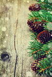 Christmas card of fir tree and conifer cone on rustic wooden background Stock Photography