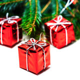 Christmas card with fir tree and red gift boxes  isolated on whi Stock Photos