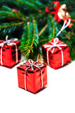 Christmas card with fir tree and red gift boxes  Stock Image