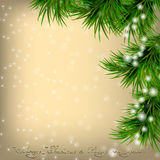 Christmas card with fir twigs and snowflakes. Golden Christmas and New Year Greeting card with fir twigs and snowflakes Stock Photos