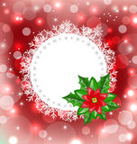 Christmas card with flower poinsettia Royalty Free Stock Images