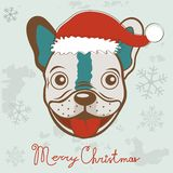 Christmas card with French bulldog Royalty Free Stock Photo