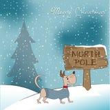 Christmas card with happy  dog Stock Photos