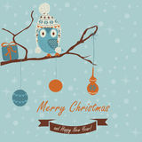 Christmas card. Christmas and Happy New Year greeting card with cute owl in winter caps sitting on branch. Cartoon style royalty free illustration