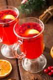 Christmas card. hot spicy Christmas drink of cranberry and spice Royalty Free Stock Photo