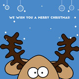 Christmas card Jolly colorful reindeer deer Stock Photos