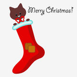 Christmas card with kitten in the sock Stock Photos