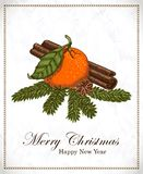 Christmas card with mandarin, vanilla, cinnamon and spruce twigs Stock Photos