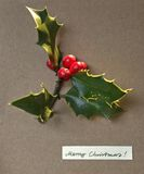 Christmas card with merry wishes. Green leaves of holly with red. Berries on brown cardboard Stock Images