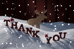 Christmas Card With Moose, Hat And Snow, Thank You, Snowflakes Stock Photography