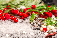 Free Christmas Card Of Evergreen Branches, Red Berry With Snow, Close Stock Photography - 47588032