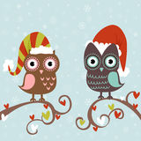 Christmas card of owls in hats. Cute winter Christmas card of owls in hats sitting on a tree branch Stock Photo