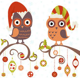 Christmas card of owls in hats Stock Photography