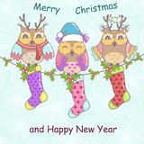 Christmas card with owls. And Christmas socks on a blue background Stock Images