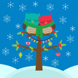 Christmas card with owls Stock Photography