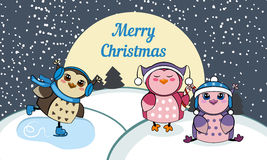 Christmas card with owls. Stock Photo
