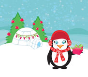 Christmas card with a penguin Stock Image