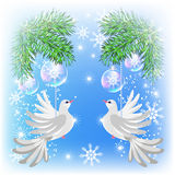 Christmas card with pigeons Royalty Free Stock Photography