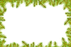 Christmas card with pine branches Royalty Free Stock Image