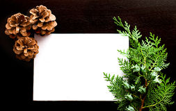 Christmas card with pine cones and spruce branches Stock Photos