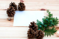 Christmas card with pine cones and spruce branches Royalty Free Stock Images