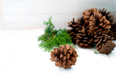 Christmas card with pine cones and spruce branches Royalty Free Stock Image