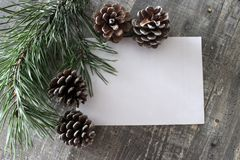 Christmas card with place for text on wooden backgraund. Christmas card with place for text. A white sheet of paper on a wooden background, the pine and cones Royalty Free Stock Image