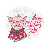 Christmas card. Portrait of the pink Pig in a red knitted nordic sweater a white background with lettering. Vector vector illustration