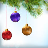 Christmas card. Realistic fir branches and festive Stock Image