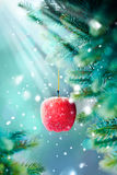 Christmas Card with Red Apple on the Branch Stock Photo