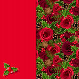 Christmas card with roses and holly. Vector eps-10. Royalty Free Stock Image