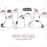 Christmas card with santa cats Royalty Free Stock Photo