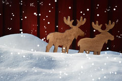 Christmas Card On Snow, Moose Coyple  And Copy Space, Snowflakes Royalty Free Stock Photography