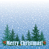 Christmas card with snow texture, Xmas background  with copy space. Stock Photos