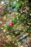 Christmas card with strawberries on a spruce branch. Snow. stock photo