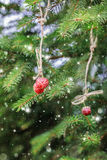 Christmas card with strawberries on a spruce branch. Snow. Royalty Free Stock Photography