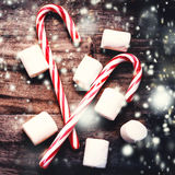 Christmas Card with  striped hard candy cane and marshmallows ov Stock Photos