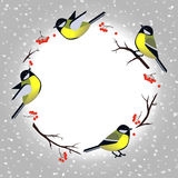 Christmas card template with cute tit bird Stock Images