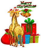 Christmas card template with giraffes and presents Royalty Free Stock Photography