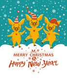 Christmas card with three pigs. vector illustration