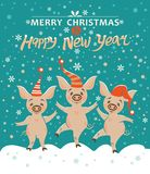 Christmas card with three pigs. royalty free illustration