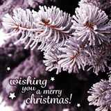 Christmas Card with Traced Snowy Background Royalty Free Stock Photography