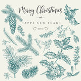 Christmas card with traditional plants. Stock Images