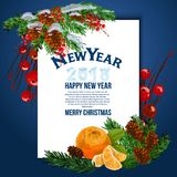 Christmas card . Vector background. Template. Christmas card with fir branches and tangerines. Vector background. Template. Place for text Royalty Free Stock Photo